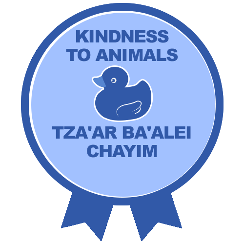 RTFH Badges kindnesstoanimals with ribbon 1
